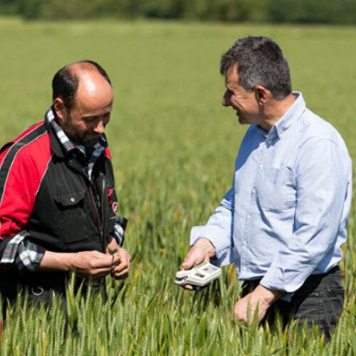 L'agriculture comme réponse au changement climatique